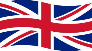 flaga - logo